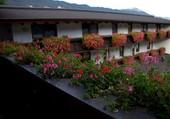 Le balcon fleuri