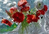Bouquet de coquelicots