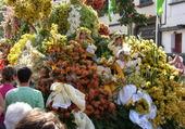 fete des fleurs a madere