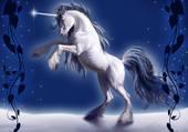 belle licorne blanche