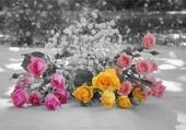 Bouquet de petites roses