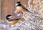 Puzzle oiseaux en hiver