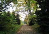 Arboretum de Cardeilhac (H-G)