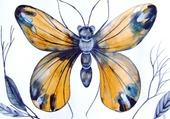 Papillon sauvage et beau