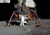 Puzzle 1969 Apollo 11 LEM
