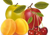 Pommes, abricots, cerises