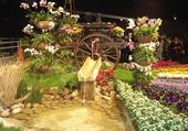Puzzle exposition de fleurs
