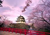 Hirosaki castle, Japon