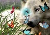 loup et papillons