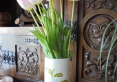 Tulipes de la Saint-Valentin