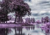 paysage surnaturel