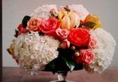 fleurs de jardin !