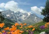 Puzzle Montagne ensoleillée