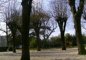 Parc à Seurre