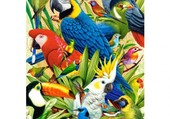 Puzzle les oiseaux