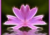 Puzzle Fleur imaginaire