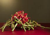 Composition moderne de fleurs