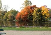 Bois de Boulognes