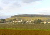 Village d'Aloxe Corton