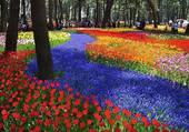 Parc de Hitachi au Japon