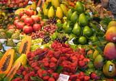 mercat la boquéria Barcelone Espagne