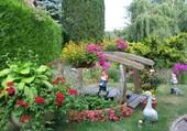Un coin de jardin
