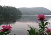 Puzzle Matin sur le lac