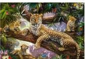 Maman leopard et ses bebe