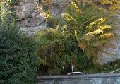 vieille fontaine