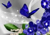 magie de bleu