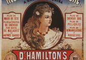 Dr Hamilton's hair restorer