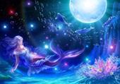 Ballet aquatique au clair de lune