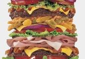 Puzzle Gros appetit!!