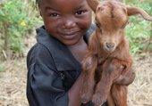 Puzzle Petite fille noir avec sa petite chèvre