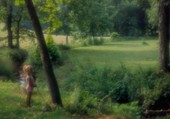 Puzzle Promenade dans la nature