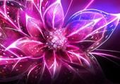 Fleur zz2