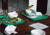 le festin des oiseaux