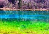 Le lac des cinq fleurs
