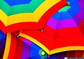 Puzzle parapluies
