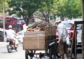 Puzzle Transport Vietnamien.2