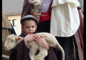 petits bergers en provence