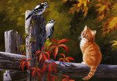 Le chat et les oiseaux