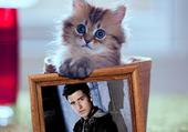 Petit chat avec Logan