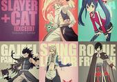 fairy tail : dragon slayer + cat