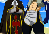 fairy tail: Les dragons jumeau