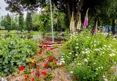 Jardin fleuri aux étang