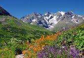 Merveilles de la montagne