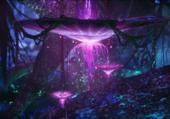 Forets de Pandora