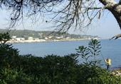 Cap d'Antibe