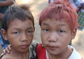 Petits Birmans